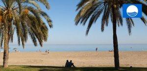 Blue Flag beaches at Playa Flamenca