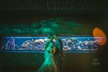 Michele & Zach' Florida Aquarium Wedding Tampa