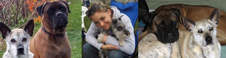 Meet Stephanie Wapp Dog Trainer