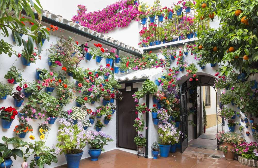 Traditional Spanish Patios, Cordoba Flower Patios, Spanish Culture