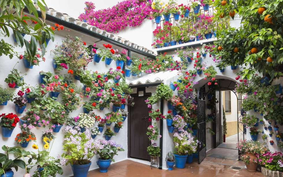 Traditional Spanish Patios, Cordoba Flower Patios, Spanish Culture