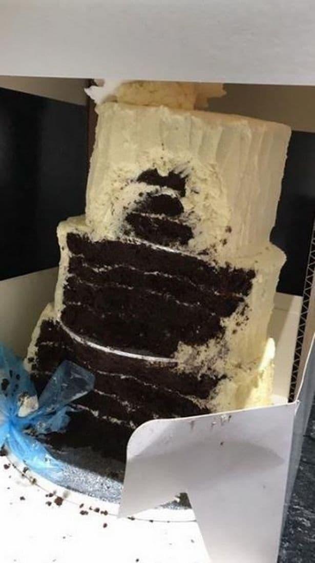 dog eaten cake