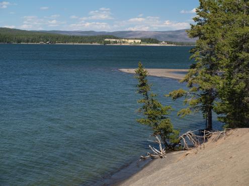 Gull Point Drive Scenic Drives Yellowstone Lake Region Yellowstone National Park Your Yellowstone Vacation