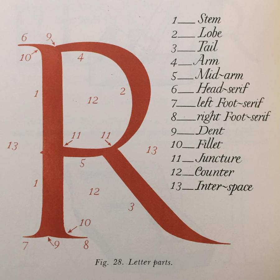 The parts of an R according to Edward Catich