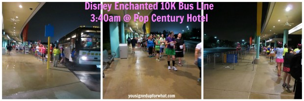 Disney Enchanted 10K bus line