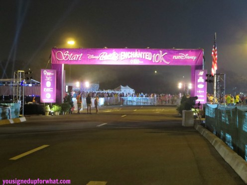 Enchanted 10K starting gate