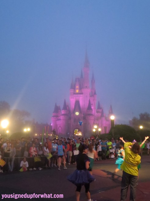Princess Half Marathon castle