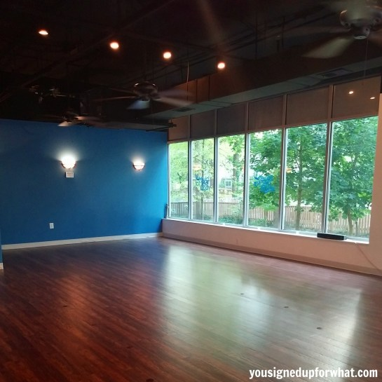 Blue Nectar Yoga main studio