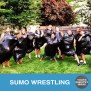 Sumo Wrestling 3 Versions Youth Downloadsyouth Downloads