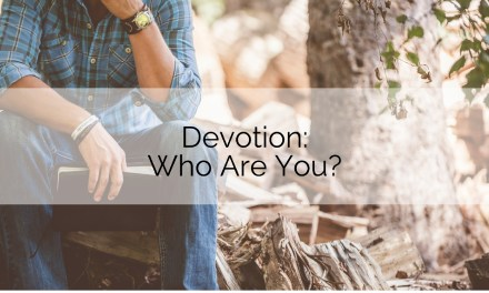 Devotion: Who Are You?