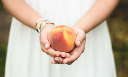 Devotion: Fruit