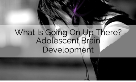 What Is Going On Up There?: Adolescent Brain Development