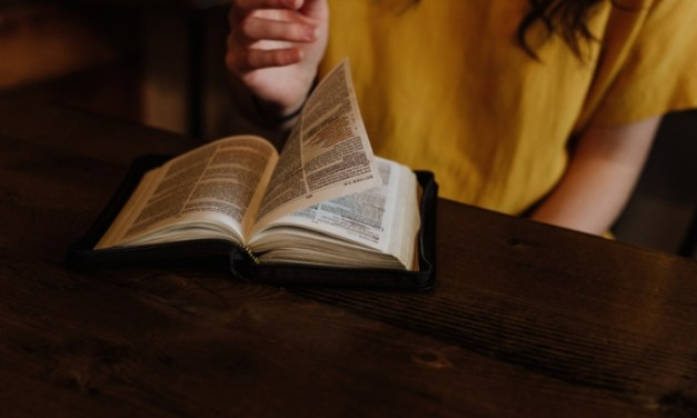 A Law and Gospel Primer