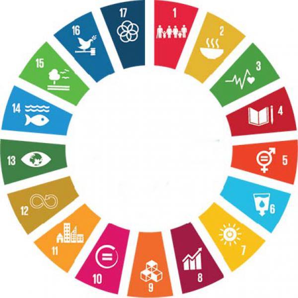 17 SDGs der Agenda 2030