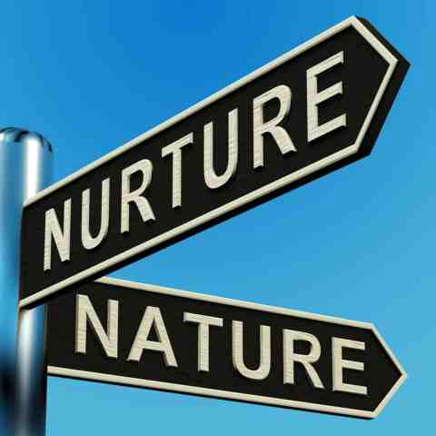 nature v . nurture around serial killers