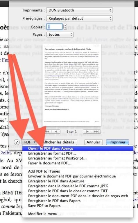transformer une page internet en pdf