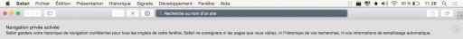 Activer la navigation privée de Safari2
