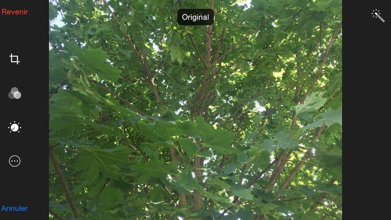 Comparez votre photo iPhone modifiée avec l'originale3