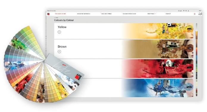 baumit life portale web colore