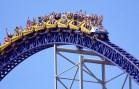 Roller Coaster Üzerindeki Adama Çarpan Kuşun Hazin Sonu