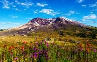 St. Helens Dağının Muhteşem Doğası