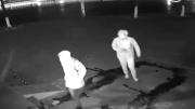 En Aptal Hırsızlar Kamerada
