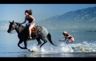 Yok Artık! Rüzgarla Değil Atla Sörf