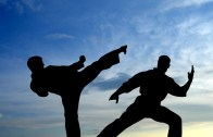 karate_fight_shadow-1280×720