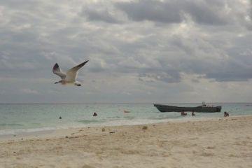 MEXIQUE: Playa del Carmen