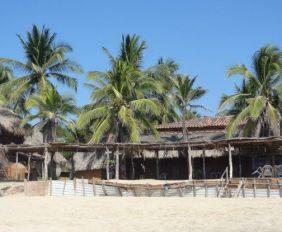 Mexique: La plage sublime de Mazunte