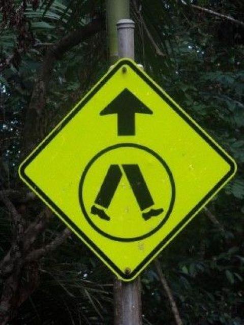 Australie- Cap Tribulation: Qui peut m'expliquer ce panneau!!!