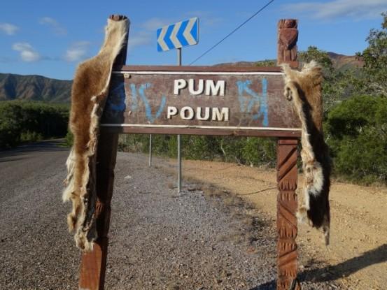 nouvelle-caledonie-pum