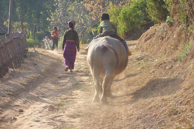 la vie continue du coté des montagnes de l'etat Shan malgré des tensions photo blog voyage tour du monde http://yoytourdumonde.fr