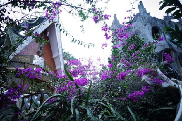 Vietnam - Dalat: Photo du Crazy Hotel de Dalat entre enchantement et fleurs.