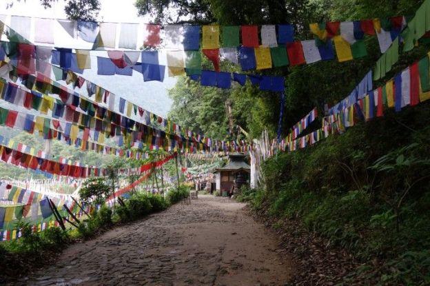 Chemin remplie de drapeaux tibetains et bouddhistes sur le Lac sacré de Khecheopalri au sikkim photo blog voyage tour du monde http://yoytourdumonde.fr