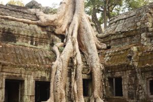 Superbe temple d'Angkor au Cambodge photo blog http://yoytourdumonde.fr