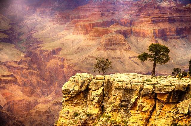 Entre arbres et roche sur le Grand Canyon. Photo tour du monde voyage http://yoytourdumonde.fr