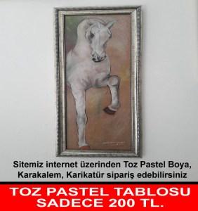 GRAFT  TOZ PASTEL TABLOSU