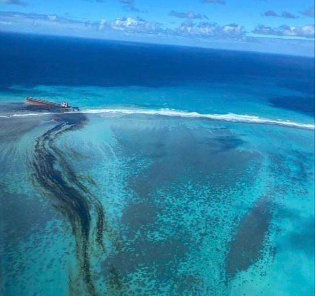Ecological disaster! Japanese freighter ran aground on the African coast for 12 days, ruptured and spilled oil, killing a century-old coral reef