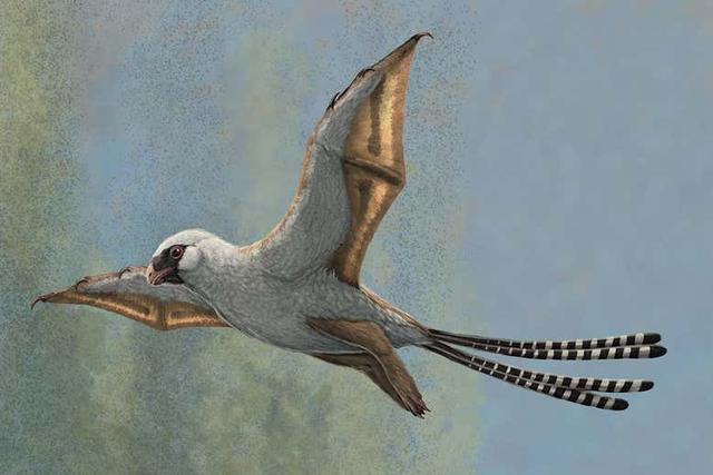 The first flying dinosaurs were a failed evolutionary experiment