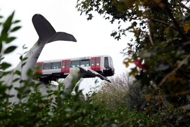 """Dutch city rail train derails, fortunately to be""""lifted"""" by the whale statue"""