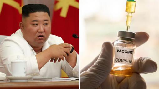 The North Korean leadership has been vaccinated against China's new crown, and in the future, China may provide vaccines to all people in North Korea