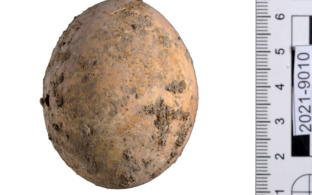 Israeli archaeologists found a thousand-year-old egg: its appearance is almost the same as a new egg