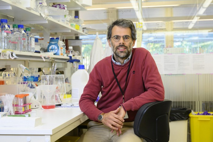 Scientists have developed low-cost technology to find new variants of SARS-CoV-2