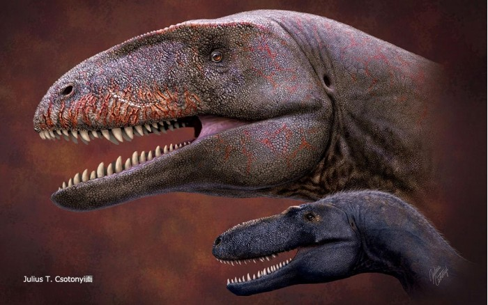Who was the strongest before Tyrannosaurus? Dinosaur fossils reveal new top predators