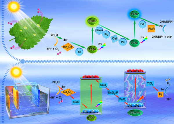 Dalian Chemical Institute has made progress in the research of photoelectric catalytic decomposition of water to produce hydrogen