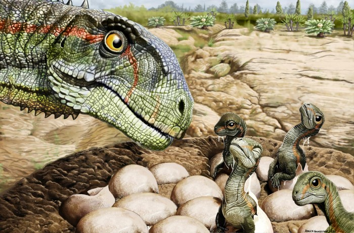 Research: Dinosaurs 193 million years ago had complex social gregarious behavior