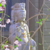Enhanced Kuan Yin with tree