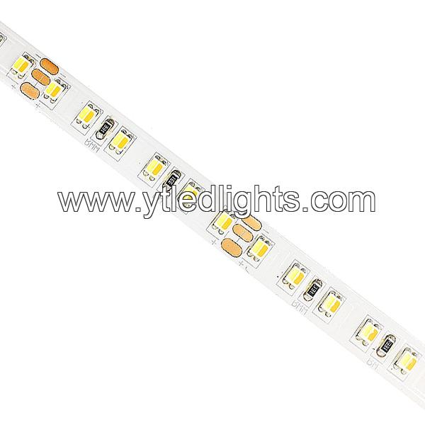3528 Color Temperature Adjustable LED Strip Lights 2