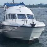 boat side fenders
